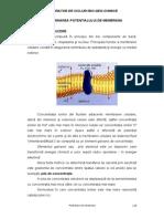 3.Potential de Membrana