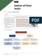 interpretation of liver enzyme tests – a rapid guide