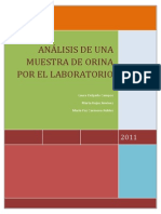 Analisis Orina en Lab