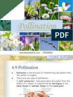 4.9 Pollination