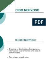 Tecido Nervoso(Ppt).