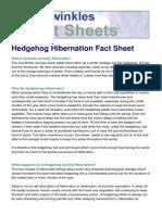 Hedgehog Hibernation Fact Sheet