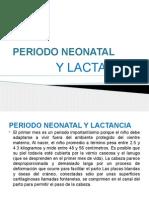 Periodo Neonatal