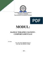 BAZELE PSIHOTERAPIEI COGNITIV-COMPORTAMENTALE ID 2012