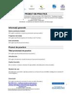 Proiect de Practica