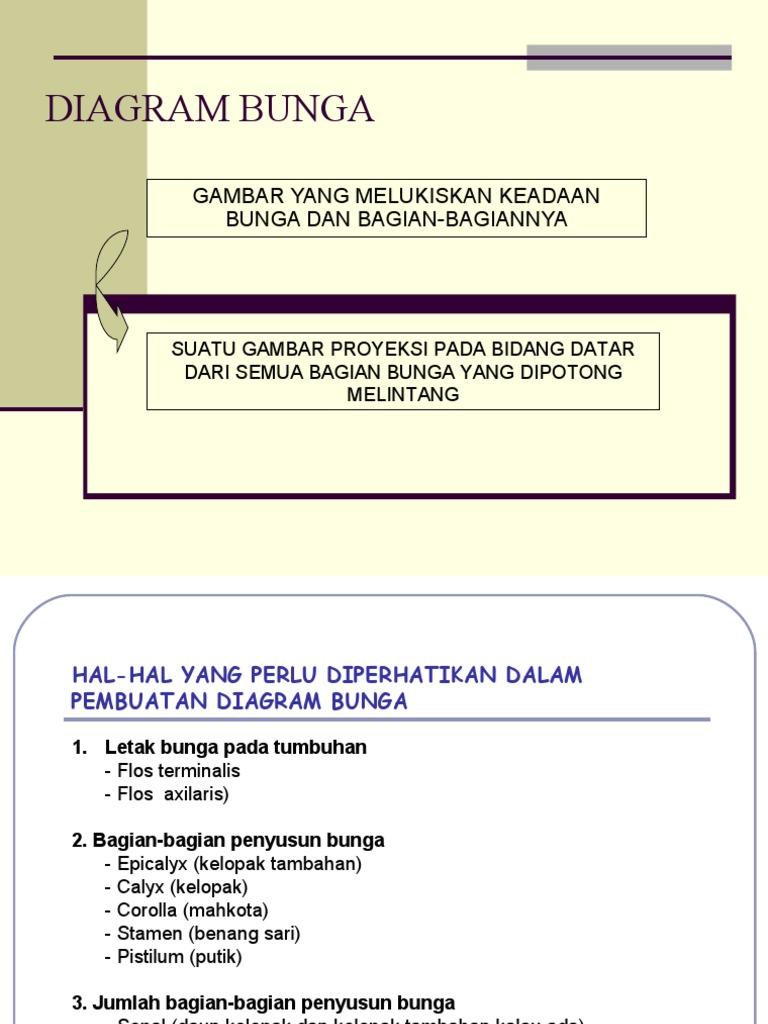 Diagram rumus bunga ccuart Images