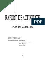Raport de activitate - The Marketing Game
