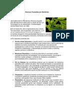 Exercício em Dupla - Microbiologia 2