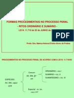 Apresentacao - Formas Procedimentais- Rito Ordinario e Sumario - 2013