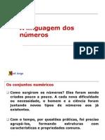1 ANO - A linguagem dos números - 2008