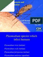 Malaria Pathogenesis