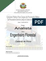 engenheiro_florestal