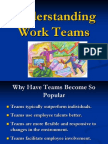 7 -Understanding Work Teams organisational behaviour