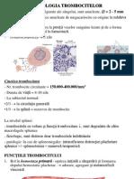 Curs 4- Trombocite, Hemostaza