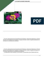 Formacion Internacional de Constelaciones Familiares (1)