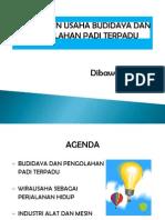 Manajemen Usaha Budidaya Dan Pengolahan Padi Terpadu - Update 22 Maret 2013 Untuk Presentasi-dm