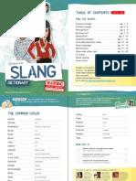 Spanish Slangs