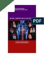 cvs-2009.pdf