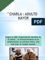 Taller Adulto Mayor Final (2)