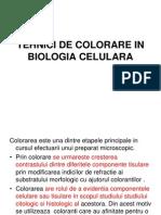 Tehnici de Colorare in Biologia Celulara