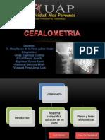 10.Cefalometria EXPO