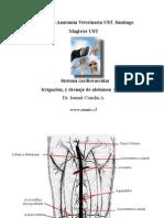 Irr,dren,In abd pelvis 003 -for PDF.pdf
