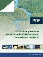 MCKINSEY & COMPANY. Caminhos para uma economia de baixa emissão de carbono no Brasil, 2009