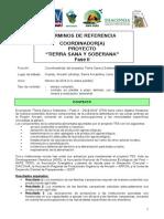 201401_ADG_TdR_Coordinador-TSS.pdf