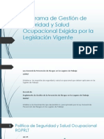 Programa de Gestión de Seguridad y Salud Ocupacional