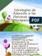 Estrategias de Atencion a La Persona Con Discapacidad