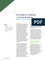 mx(es-mx)El Comité de Auditoría y el Control Interno