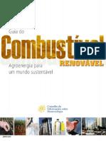Guia de comb renovvavel.pdf