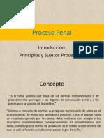 Introduccion Proceso Penal_ MCO