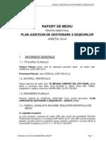 Raport de Mediu Pjgd Cj