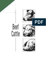 Livestock Judgeing