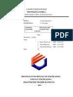 laporan CIPS DCVG