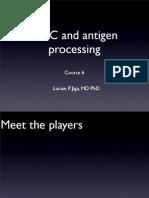 Lecture 7 Mhc Antigen Processing