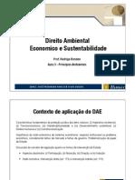 Aula 2 - D Ambiental Economico