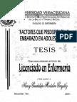 tesis-0251