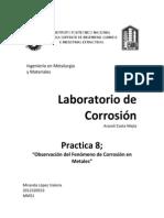 Lab. Corrosión. Observación del Fenómeno de Corrosión en Metales