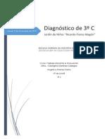 DIAGNOSTICO COMPLETO.docx