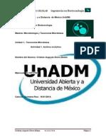 MTM_U1_A1_CRSB