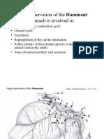 Inerv rumen 013-2012 AV2-.pdf