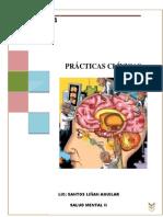 Pae Esquizofrenia PARANOIDE (Autoguardado)