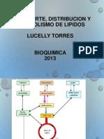 Transporte y Distribucion de Lipidos-1