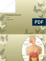 Metabolismo Dolors