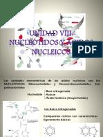 Ácidos Nucleicos I