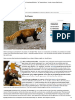 7 Things You Didn't Know About Red Pandas _ The Thoughtful Animal, Scientific American Blog Network