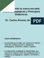 Principios didàcticos