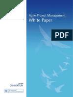 Agile PM White Paper - Feb 11